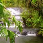 cascade-au-costa-rica